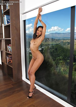 Model Skin Diamond , IntheCrack Pussy Closeup Gold collection huge vagina video